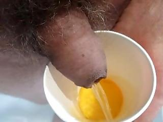 Piss In A Cola Cup