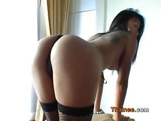 Is She Asa Akira S Sister - Cams444.com