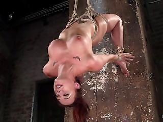 Chanel Preston - Hogtied