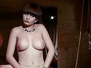 classique, sexe en groupe, hardcore, star du porno, vintage
