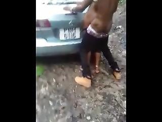 Fucking In Bush
