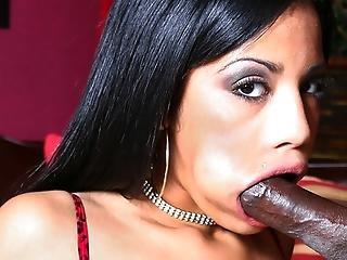 A Big Breasted Ebony Beauty Suck A Big Black Meat Stick