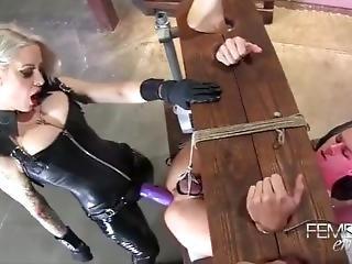 dominacja, fetysz, strapon, zabawki