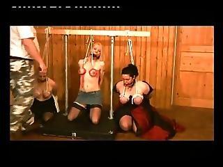 Bdsm, Torture