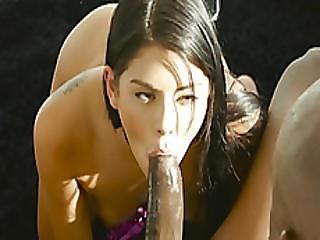 Superb Babe Gina Valentina Sucks And Fucks A Black Rod