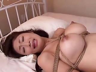 Busty Milf Fucked Tied