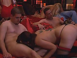 Orgy Enthusiasts Paradise At Its Finest