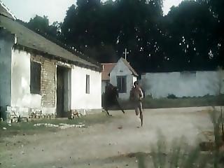 Katharina And Her Wild Stallions - 1983