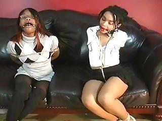 Black Beauties In Hard Hogtie