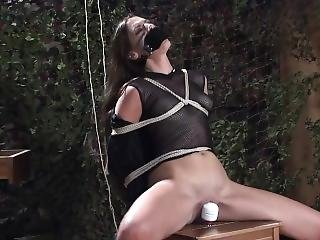 Becky Perry Chairtied