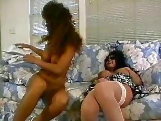 Hermaphrodite Jazzmine Rose Watches Porn And Fucks Jade East