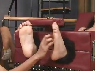 nohy, fetiš, noha, hardcore