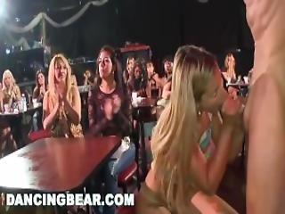 Xxx danza orso video