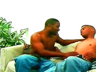 darmowe filmy seksu grupowego