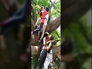 Indian Couples Hot Romance In Jungle