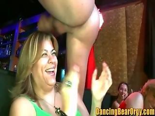 Amateur Strip Club Debauchery - Dancingbearorgy.com