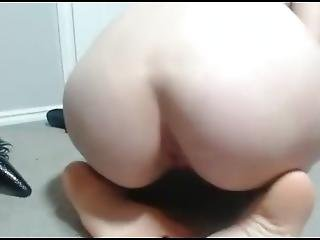 Kitty Trying Tail Playing With Pussy