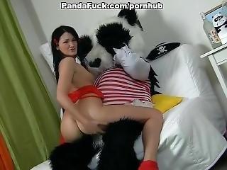Huge Toy Panda Fuck Young Girl