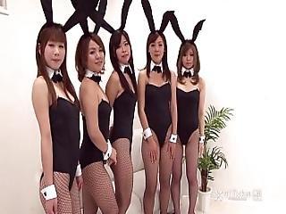 41ticket - Japanese Bunny Orgy Uncensored Jav