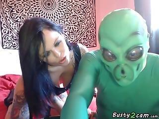 Sex Between Two Species Front The Webcam