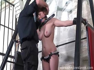 Slave Tayolor Hearts Bound And Gagged Whipping With Blonde Debutant Submissive