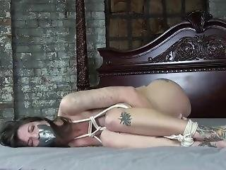 Bound Tattooed Babe In Bondage And Gagged, Struggling To Escape