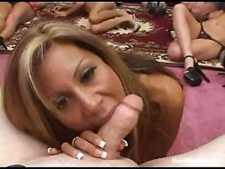 Group Of Girls Suck A Lucky Dick And Share A Cum