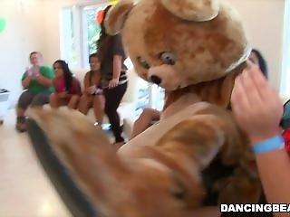 クマ, ダンシング, 陰茎, おもしろい, 身持ちの悪い女, いじめている, 野生の