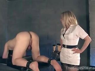 Prostate Milking Experiment