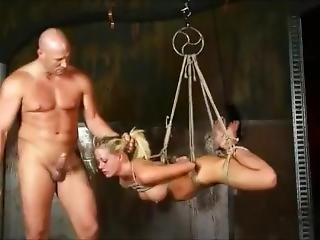 Holly Heart Suspended Hogtied