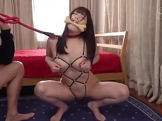 Japanese 12