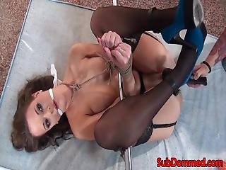 Nipple Clamped Sub Spreadeagled For Toy