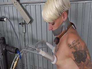 Stripping Milking Jerk Off
