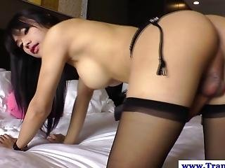 Ladyboy Amateur Toying Her Asshole