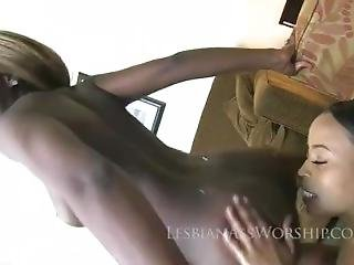 Kay Love And Michelle Malone Licking Ass