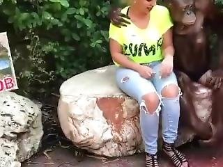 This Monkey Is A Banger Than Your Homeboys