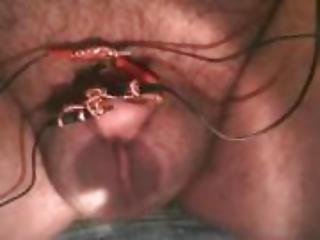 torture tube 18qt free porn movies sex videos
