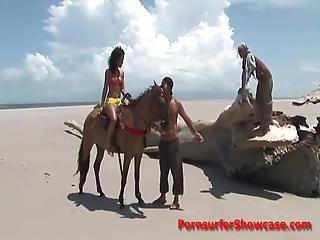 Horse Rider Gets Ridden By Two Sand Studs