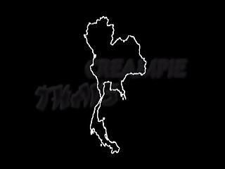 Thai-girl-creampie-insemination-inseminated-oplodneni-oplodnena-teen-cum-inside-vagi