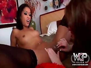 Lesbians Enjoy Rough Pleasures