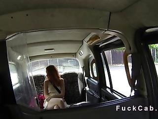 ametérské, kotě, britské, péro, krajka, droubouncí, veřejné, skutečnost, zrzka, bezpečnostní kamera, sex, taxi