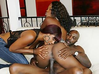 Black Cuties Fucked By Bbc In Threesome