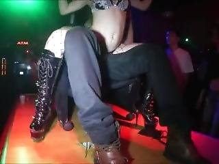 Artists Strippers Gone Wild @ Crazy Horse Tampa Fl