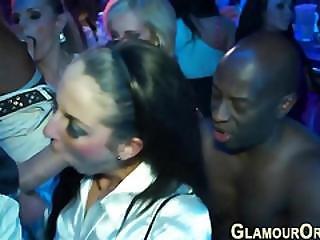 Party Sluts Suck And Fuck