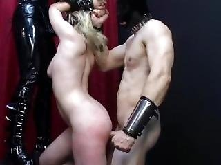 πρωκτικό, bondage, συλλογή, femdom, φετίχ, strapon