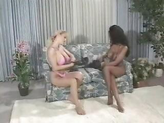 Ebony Vs. Ivory Busty Boxing