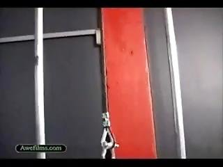 Marja Total Muscle Gym