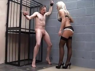 Brutal Ballbusting By Blonde Mistress