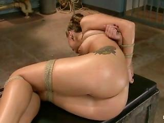 Hogtied - Dallas Blaze
