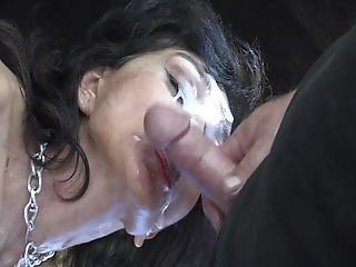 Cum On Slutzebra S Beautiful Face
